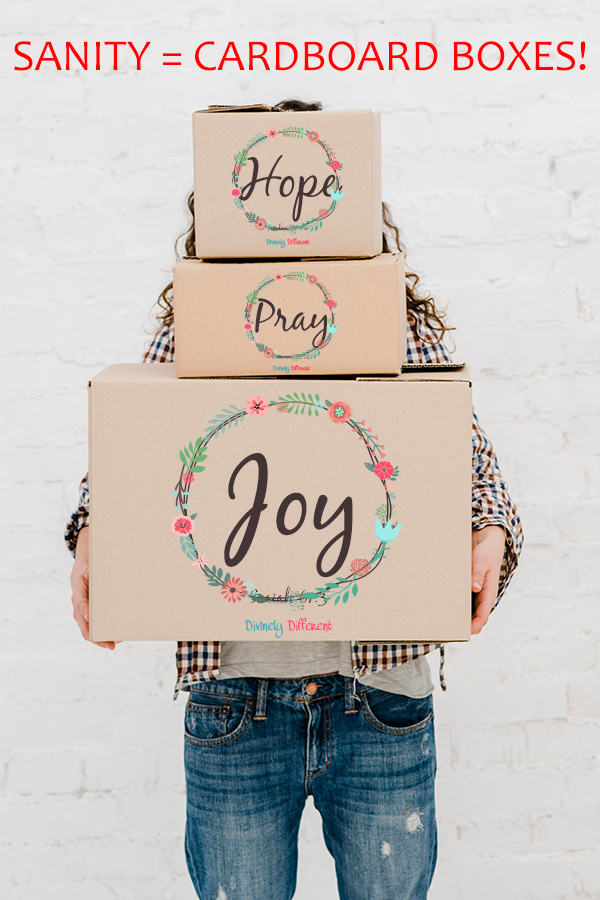 SANITY = CARDBOARD BOXES! Pinterest